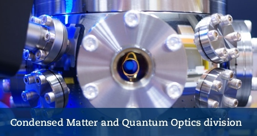 Condensed Matter and Quantum Optic Division